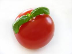 tomatobasil